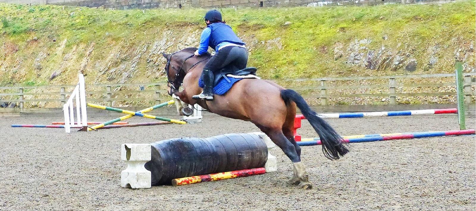 Jumping Lesson Bel-Air Equestrian Centre Ireland