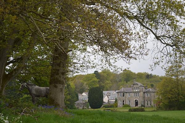 Bleiben-Sie-in-diesem-ländlichen-Juwel-auf-Ihrem-Reiturlaub-Bel-Air-Hotel-Co-Wicklow-Irland
