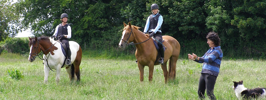 Cross-Country-lesson-at-Bel-Air-Equestrian-Centre