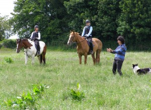 Cross-Country lesson at Bel-Air Equestrian Centre