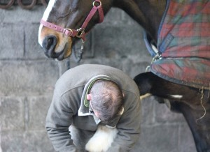 Izzy and Mick the Farrier in the forge at Bel-Air Equestrian Centre, Co. Wicklow, Ireland