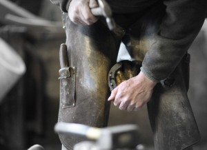 Izzy getting new shoes for the Saturday ride-out at Bel-Air Equestrian Centre