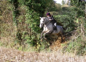 Nice and tidy over a ditch at a the Bel-Air mock hunt