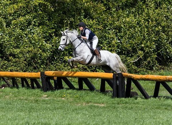 Rachel-hoppar-terräng-på-vår-egen-uppfödning-traditional-irish-horse-Fiddler-på-Bel-Air-Equestrian-Centre