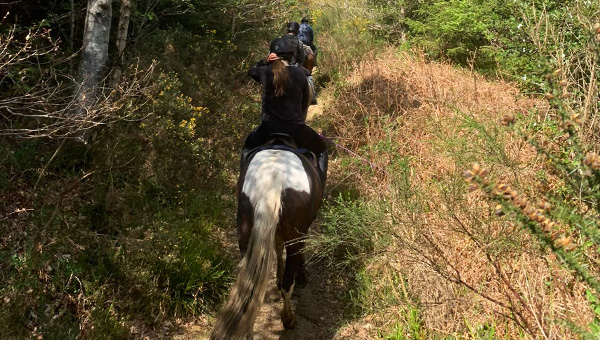 Ride-out at Bel-Air Equestrian Centre