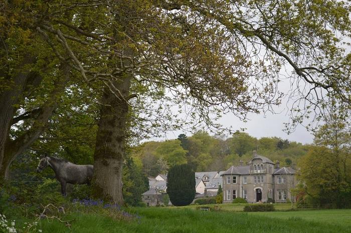 Sejourner-dans-ce-joyau-rural-pendant-vos-vacances-équestres-Bel-Air-Hotel-Co.Wicklow-Irlande